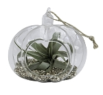 Golden Glitter Pumpkin Tilly Terrarium (Pack of 12)