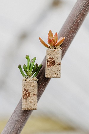 Magnetic Wine Cork Succulent Planter (Pack 48)